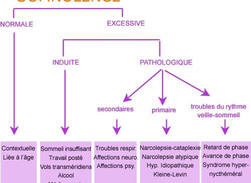 Somnolence et pathologies du sommeil